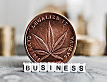 Coin with marijuana leaf and word business