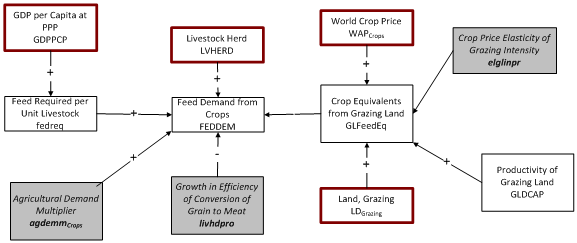 animal feed demand for crops flowchart