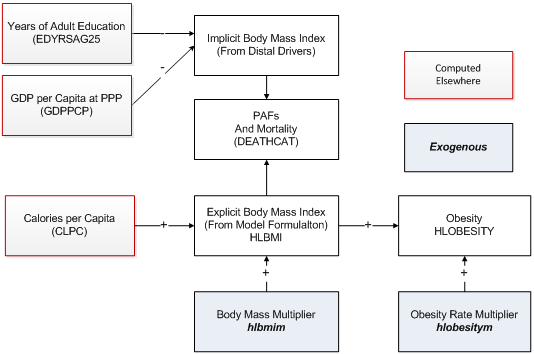 BMI and obesity flowcharts