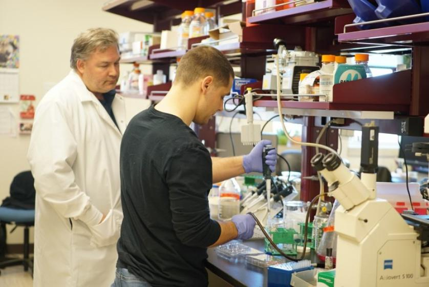 Dan Linseman works with Todd Savolt in his lab.