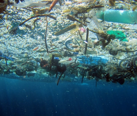 Experts estimate that by 2050, there will be more plastic in the ocean than fish.