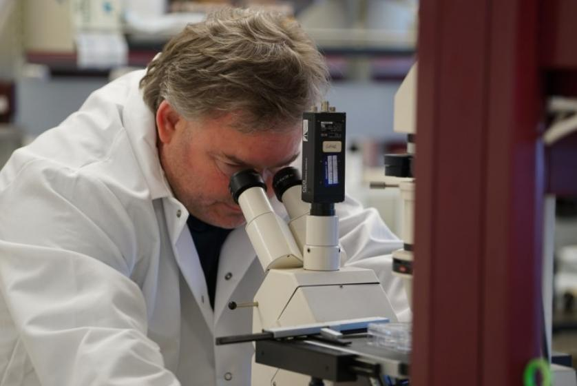 Dan Linseman works with undergraduate students in his lab.